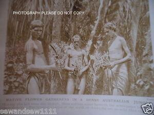 ANTIQUE-PHOTO-AUSTRALIAN-ABORIGINAL-BOYS-AUSTRALIA-PHOTOGRAPH-SEMI-TRIBAL