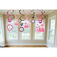 (12pc) Sweet Safari Girl Pink Swirl Decorations Baby Shower Party Supplies - 671131 Toys