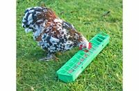 Gaun Plastic Pigoen, Poultry, Bird, Chick Trough Feeder From Solway Feeders
