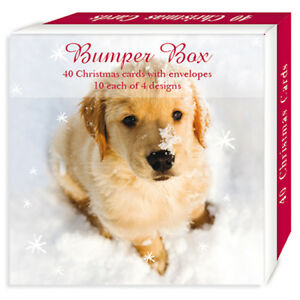 Assorted-Christmas-Cards-Yuletide-Pups