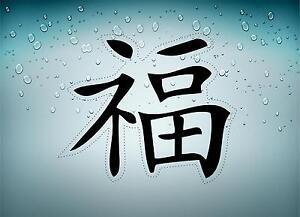 Pegatina-autoadhesiva-coche-motorrad-macbook-signo-chino-plateado-riqueza-r2