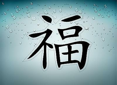 Autocollant sticker voiture moto signe chinois  sante  r3 tuning