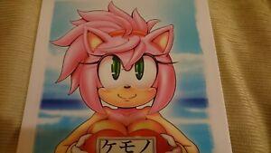 Doujinshi-Sonic-the-Hedgehog-B5-de-22-paginas-kemono-kandume-Gaiden-4-furry-fandom