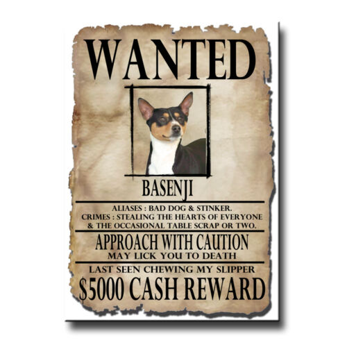 BASENJI Wanted Poster FRIDGE MAGNET No 2 New DOG Funny