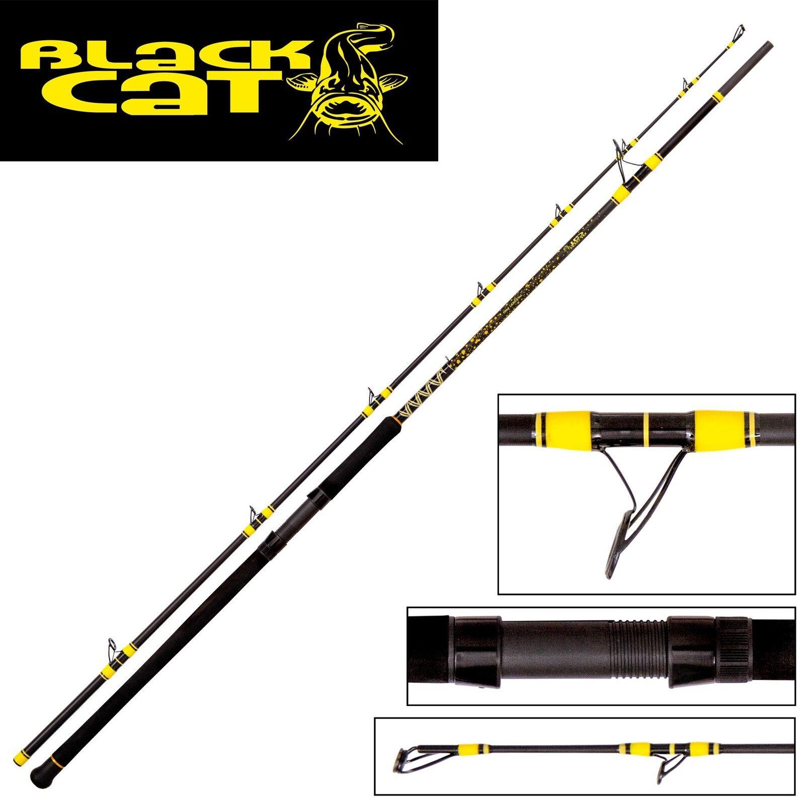 schwarz Cat Passion Pro Pro Pro DX 2 70m 600g Rute Wallerrute Welsrute Waller Grundrute 2a9d8c