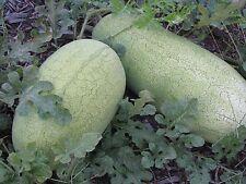 Heirloom Melon & Squash Garden Collection-Organic Non GMO-4 varieties-160+seeds