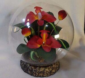 Glass-Dome-Artificial-Orchid-Arrangement