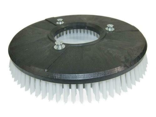 Bürste Schrubbbürste Standard für Nilfisk-Advance CR 1200 B//D//P//LPG