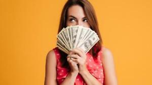 ESTABLISHED-INTERNET-ONLINE-BUSINESS-WEBSITE-TURNKEY-MONEY-MAKER-200-000-A-YEAR