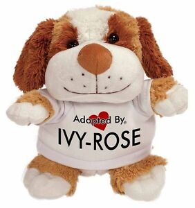 Adopted By IVY-ROSE Cuddly Dog Teddy Bear Wearing a Printed Named , IVY-ROSE-TB2