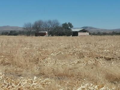 Finca/Rancho en Venta en San Antonio