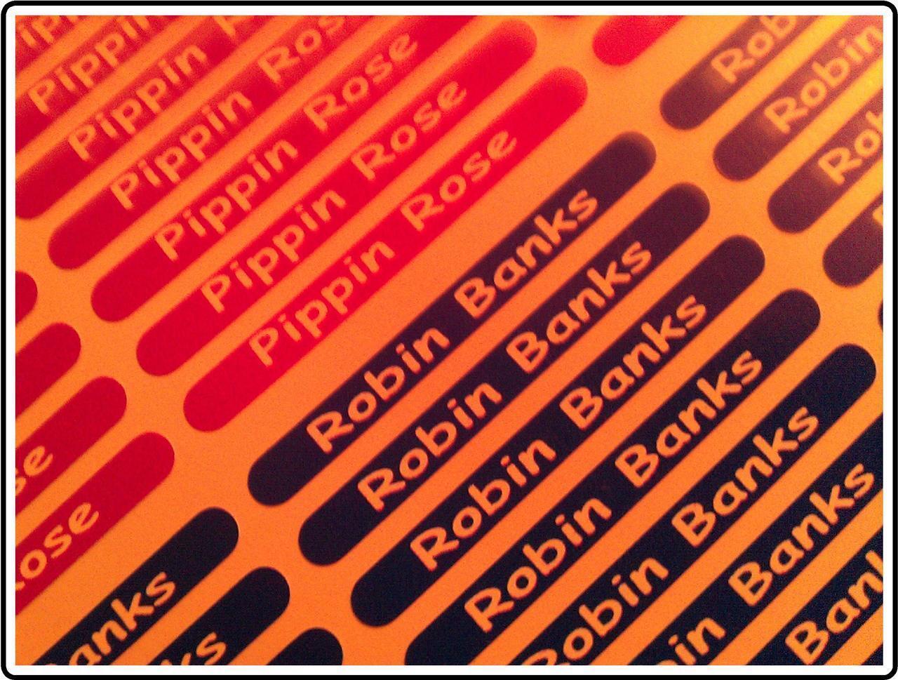 s l1600 - 100 Personalizado Mini Nombre Pegatinas-Etiquetas-Adhesivos-Impermeable