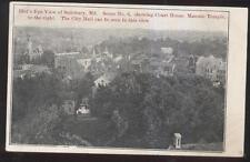Postcard SALISBURY MD  Court House/Masonic Temple & City Hall Aerial view 1906
