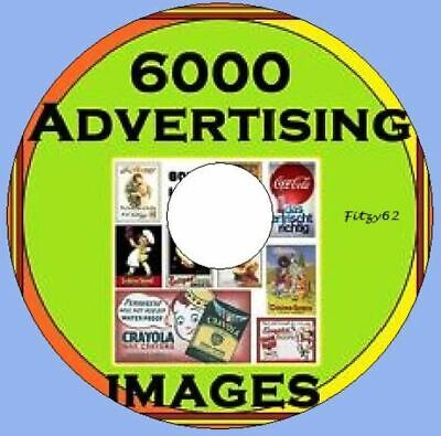 480 vintage Victorian Cat images /& Pictures CD