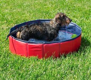 Piscine pour animaux de compagnie Lit parapluie pour chien Lit pour chiot Lit pour chien Piscine pliable