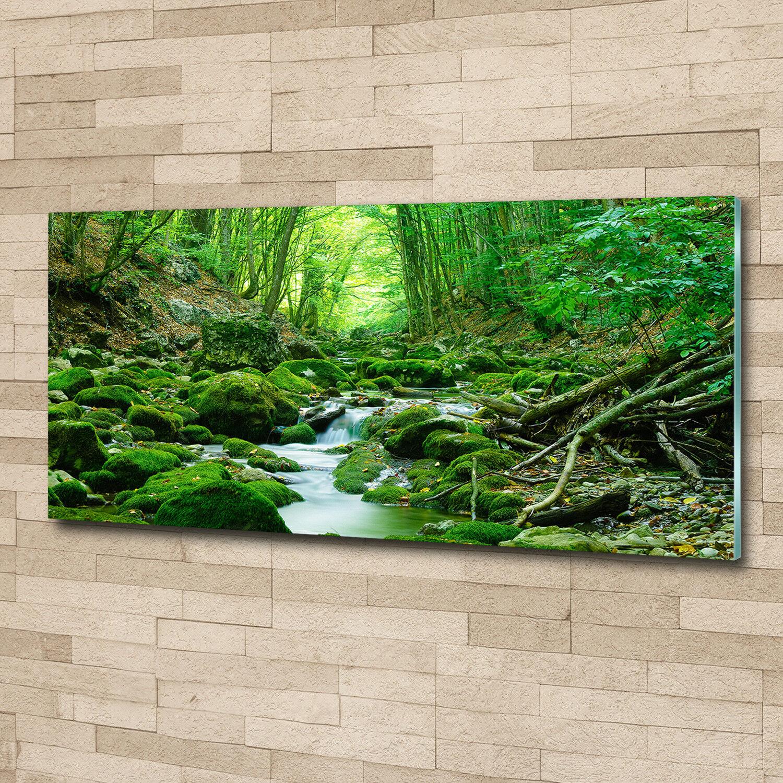 Glas-Bild Wandbilder Druck auf Glas 125x50 Deko Landschaften Bach im Wald