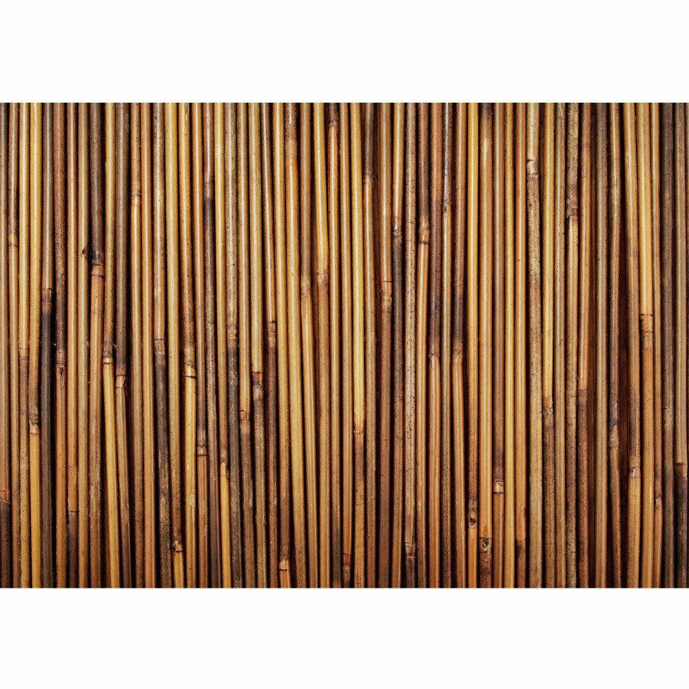 Fototapete Bambus Wald Dschungel Garten Natur tropisch Bäume liwwing no. 173
