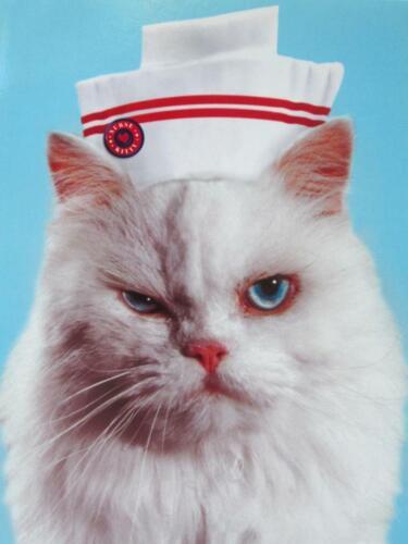 """/""""You BETTER Get Better!/"""" AVANTI Get Well Card MEAN CAT NURSE"""