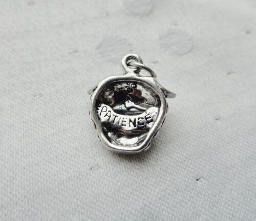 Fresa de paciencia 3D frutos del espíritu encanto plata esterlina 925