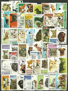 CATS-and-DOGS-Collection-Packet-of-100-Different-WORLD-Stamps