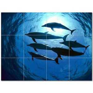dolphin photo ceramic tile mural kitchen backsplash