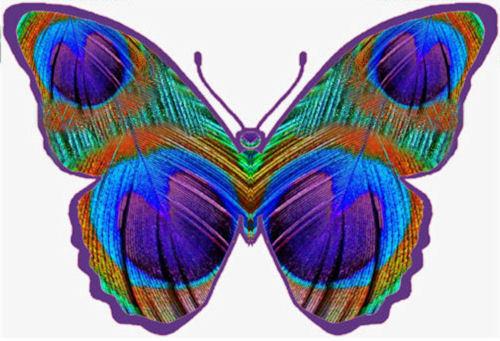 25 papillons plume de paon comestibles décorations gâteau cupcake