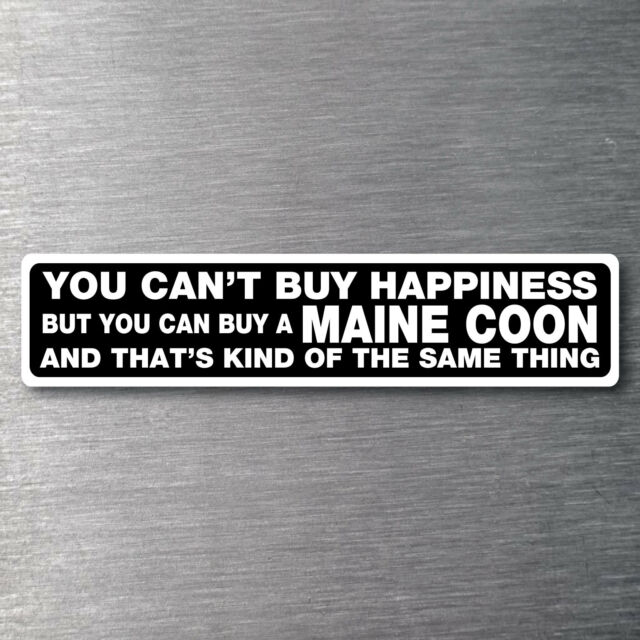 Buy a Maine Coon sticker quality 7 yr water/fade proof vinyl cat kitten