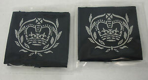 RAF-Cadet-Warrant-Officer-Rank-Slides-PAIR