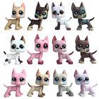 Littlest Pet Shop GREAT DANE chien LPS Rare puppy Kids collection cute toy gift