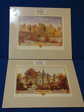 Michael Powell Signed #ed Print Art Cardiff Castle Caerphilly Wales South Bute
