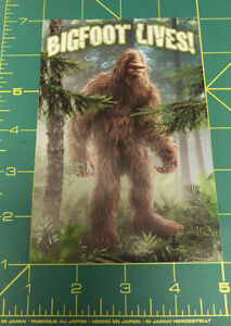 BigFoot-Lives-Postcard-New-Unused-Big-foot-pictured-on-front-Sasquatch