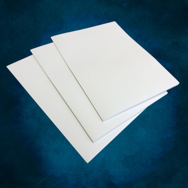 9x12 12pt C1S White Presentation Folders quantity 250