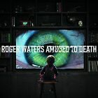 Roger Waters Amused to Death Analogue Productions RMSTD 200gm Vinyl 2 LP Sea