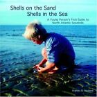 Shells on The Sand Shells in The Sea 9781413490664 by Frances Haviland