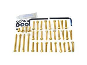 Pro-Bolt-ESU103G-Set-Screws-Engine-Gold-Ergal-Suzuki-Bandit-650-2009-2010-Oif
