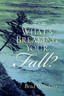 What's Breaking Your Fall? by Brad Williams (Paperback / softback, 2005)
