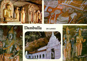 SRI-LANKA-Ceylon-Postkarte-Multi-View-Postcard-of-DAMBULLA-Temple-Tempel-AK