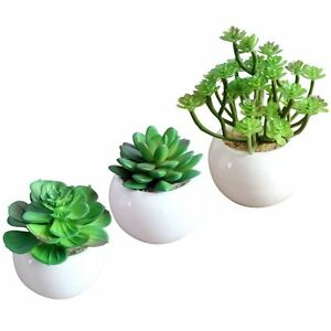 set of 3 artificial succulent plant plants round white ceramic planter plant pot. Black Bedroom Furniture Sets. Home Design Ideas