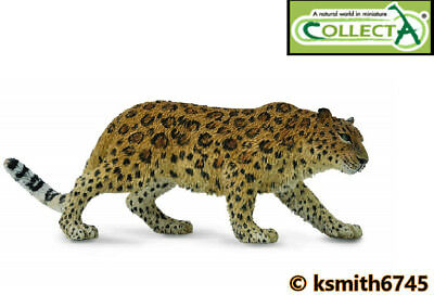 NEW * CollectA AMUR LEOPARD solid plastic toy wild zoo animal cat predator