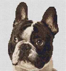 "French bulldog Counted Cross Stitch Kit 7"" x 7.5"" 18 cm x 19 cm  </span>"