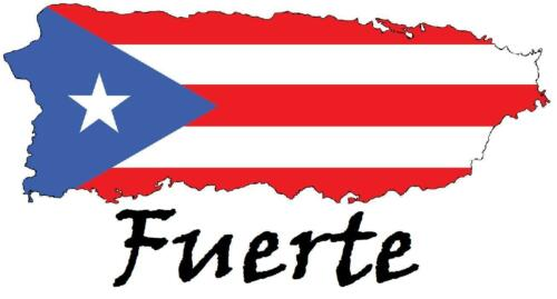 strong Puerto Rico # 10-8 x 10 T-shirt iron-on transfer Fuerte