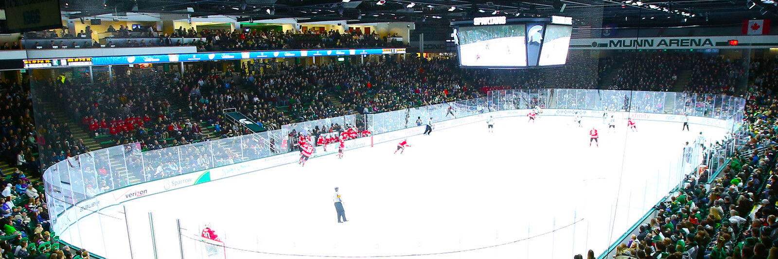 Ferris State Bulldogs at Michigan State Spartans Hockey