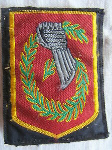 IN4424-INSIGNE-TISSU-6-Division-Legere-Blindee