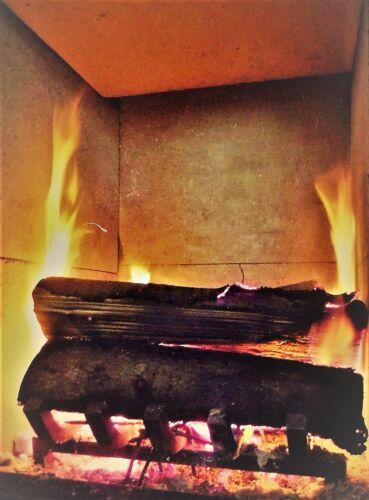massivement et génial FOUR rouille jardin Barbecue Cheminée utilisation Feuerbock 40x30x8