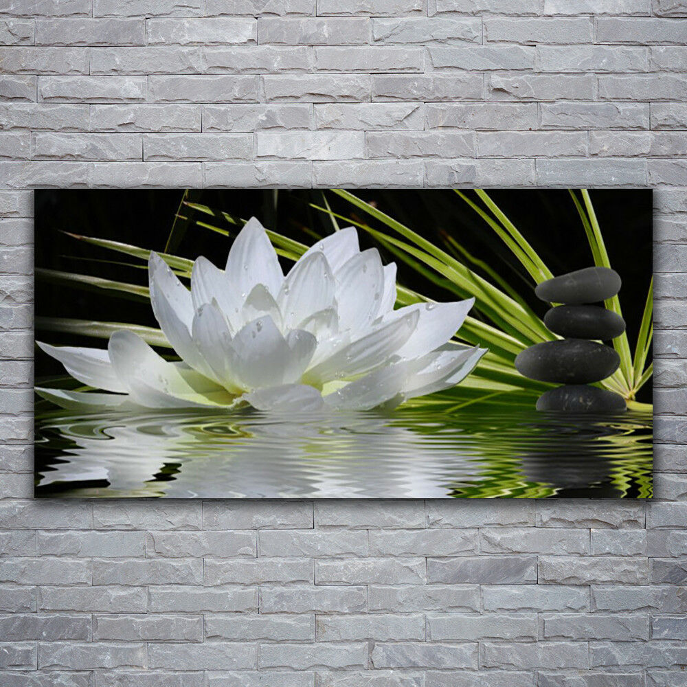 Verre Imprimer Wall Art Image 120x60 photo fleur pierres eau Floral