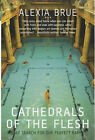 Cathedrals of the Flesh: My Search for the Perfect Bath by Alexia Brue (Paperback, 2004)