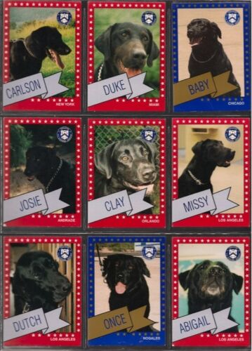 #6 9 Black Labrador + 2 Chocolate Lab heroes, 11 cards, US Cuss Service