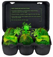 Alien Egg Carton Glow In The Dark Alien Eggs Accessory Pack on sale