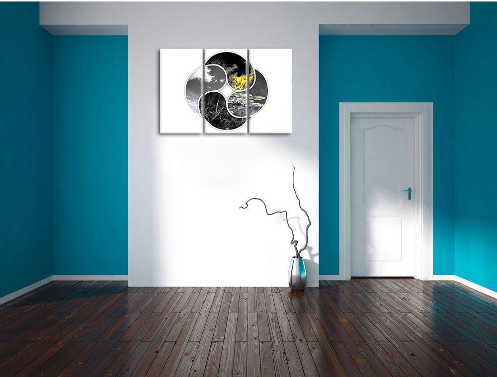La Cuatro Elemento BW Detalle 3-Teiler Foto Decoración en Lienzo Decoración Foto de Pa rojo  522022