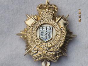Royal-Logistic-Corps-RLC-Barettabzeichen-Anodised-Aluminium-Staybright-TKS